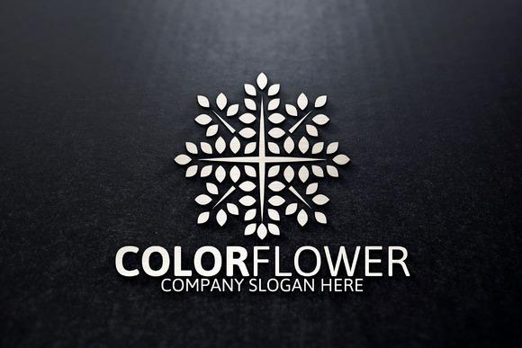 Color Flower Logo