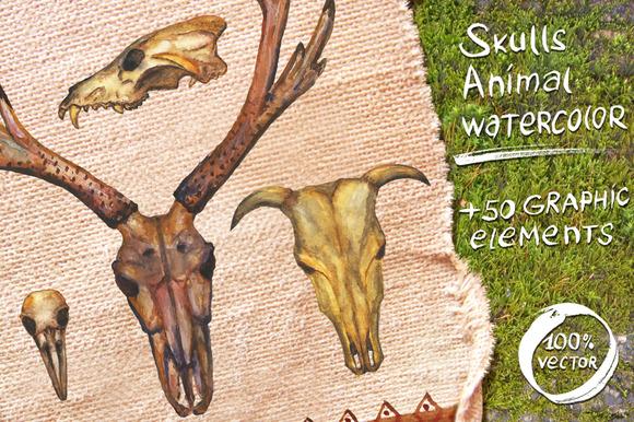 Watercolor Painted Animal Skulls