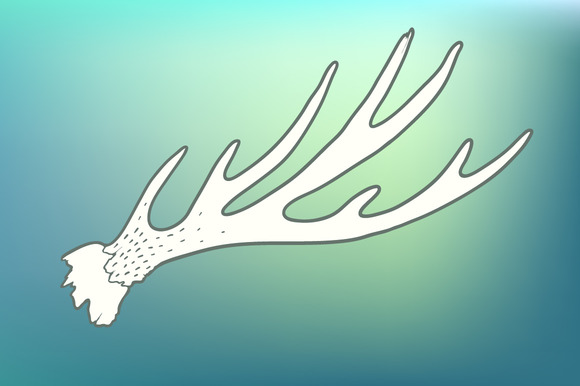 Hand Drawn Vintage Deer Horns