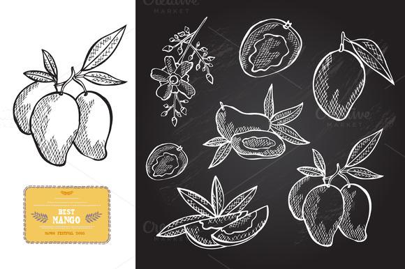 Hand Drawn Mangoes