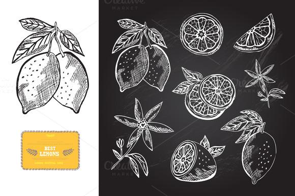 Hand Drawn Lemons