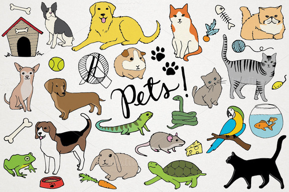 Animals Pets Illustrations