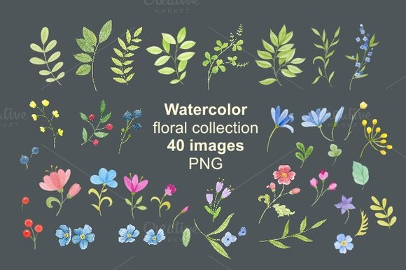 Watercolor Flowers Floral Painting
