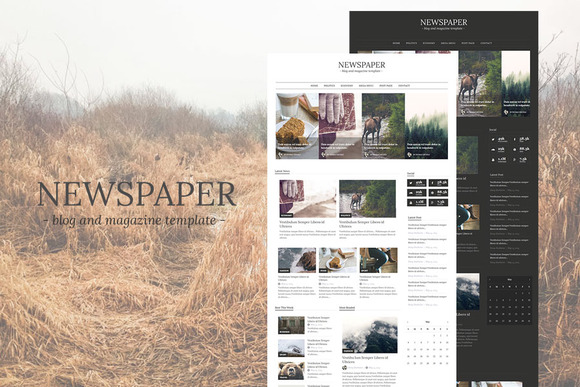 Newspaper-Blog And Magazine Theme