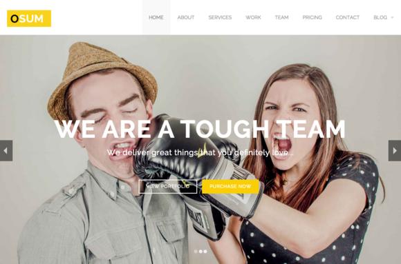 Osum Onepage HTML Theme