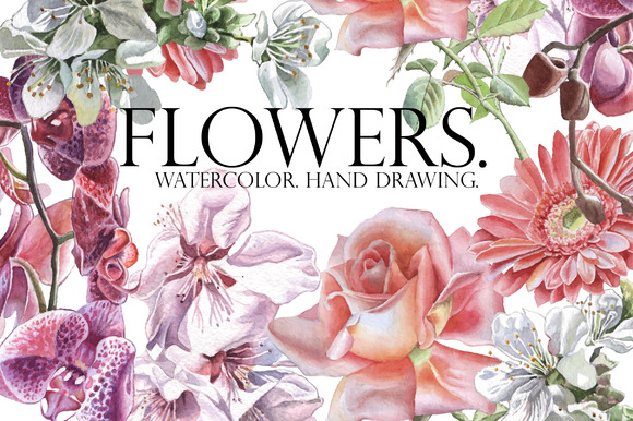 Flowers Watercolor Hand Drawing