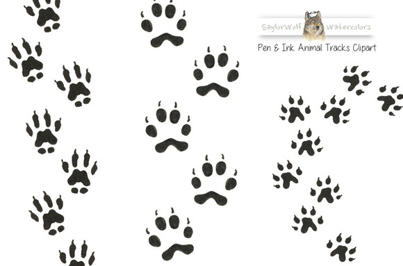 Woodland Animal Tracks Clip Art