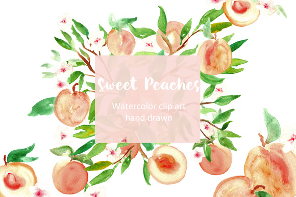 Peach Watercolor Clip Art
