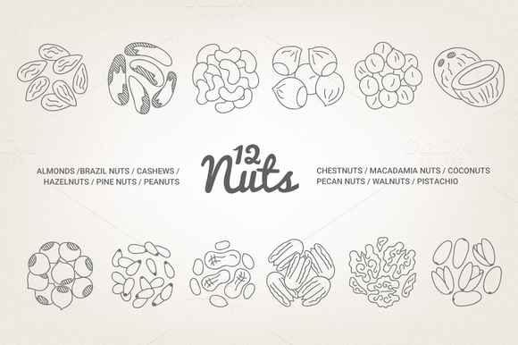 12 Nuts Illustration Patterns