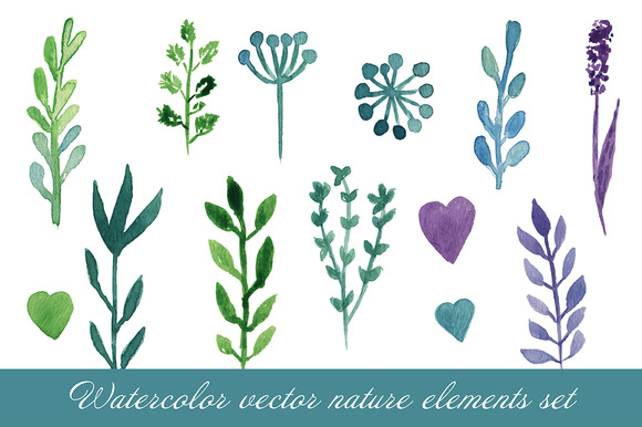 Watercolor Nature Elements Vector