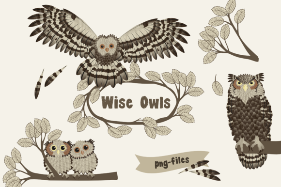 Wise Owls Animal Clipart