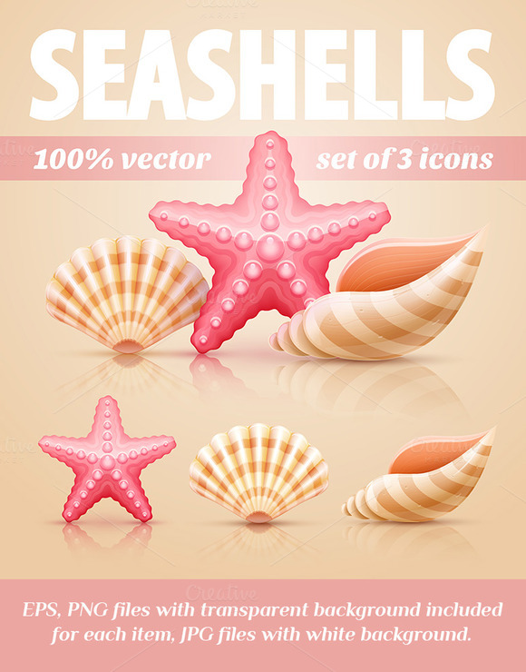 Icons With Seashells And Starfish