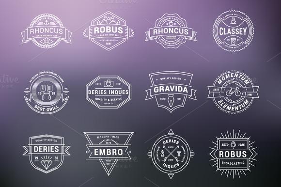 Set Of Vintage Thin Line Badges