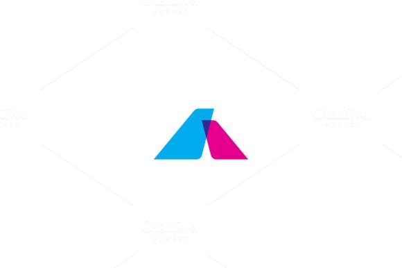 Flying Company Logo