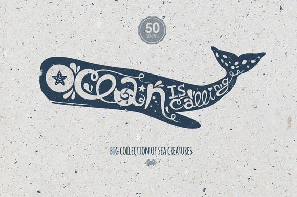 Oceanic Collection