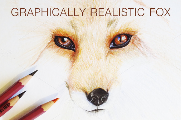 Graphically Realistic Fox