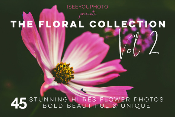 THE FLORAL COLLECTION Vol 2