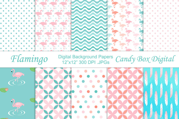 Flamingo Background Papers