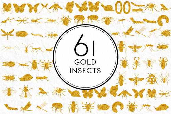 Gold Insects