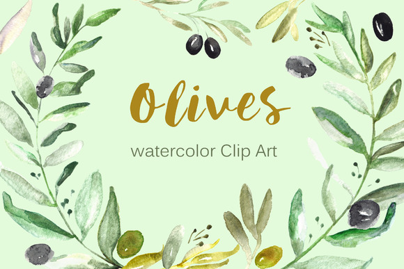 Olives Watercolor Clip Art