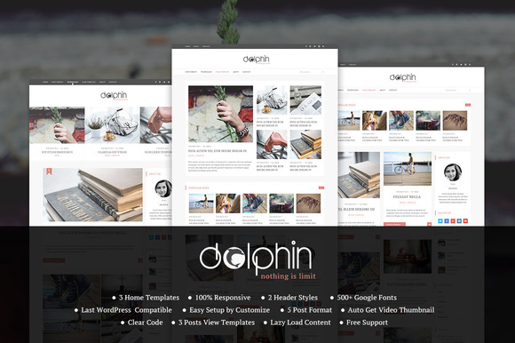 Dolphin Elegant Wordpress Theme