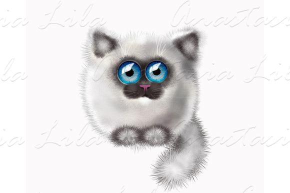 Gray Cat Illustration