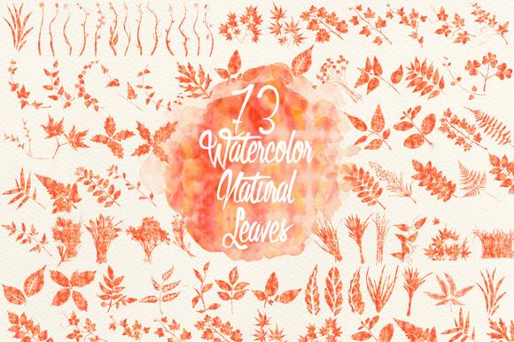 Watercolor Orange Natural Leaves