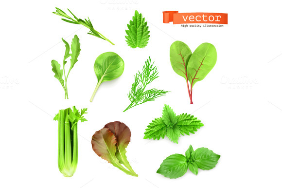 Green Herbs Vector Icons