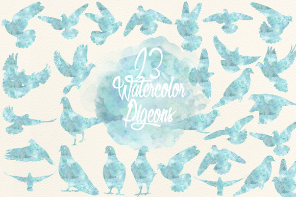 Watercolor Gray Blue Pigeons