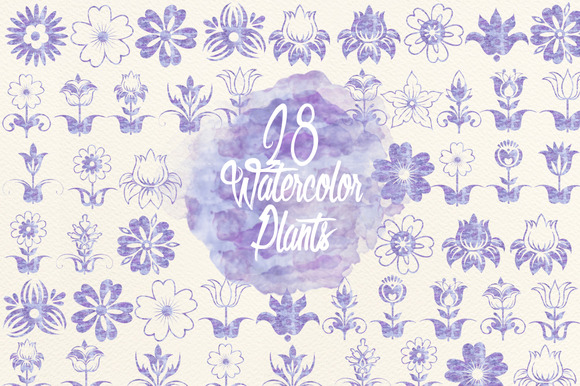 Watercolor Lavender Plants