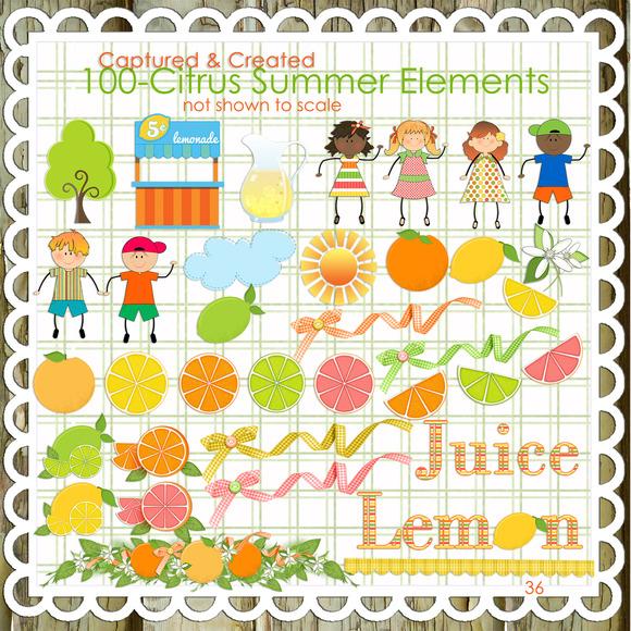 100 Citrus Summer Elements Clipart