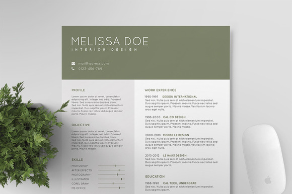 Resume CV Template IV