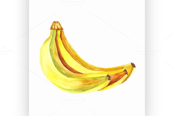 Bananas Vector Watercolor Painting