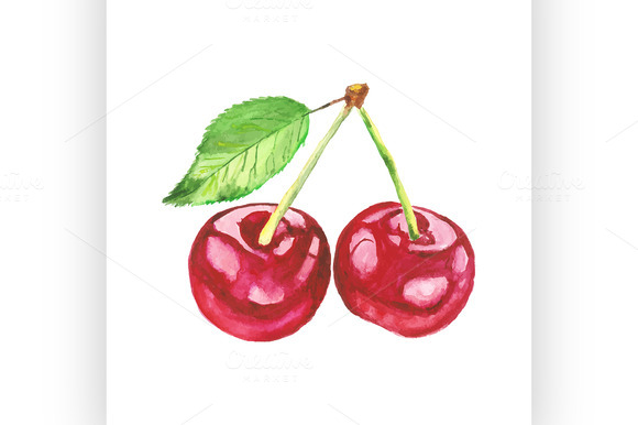 Cherries Vector Watercolor Painting
