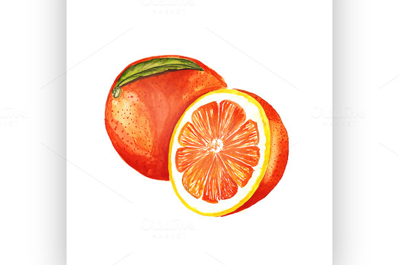 Orange Vector Watercolor Painting