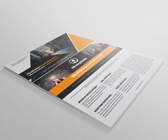 Business Evolution Flyer Template VI