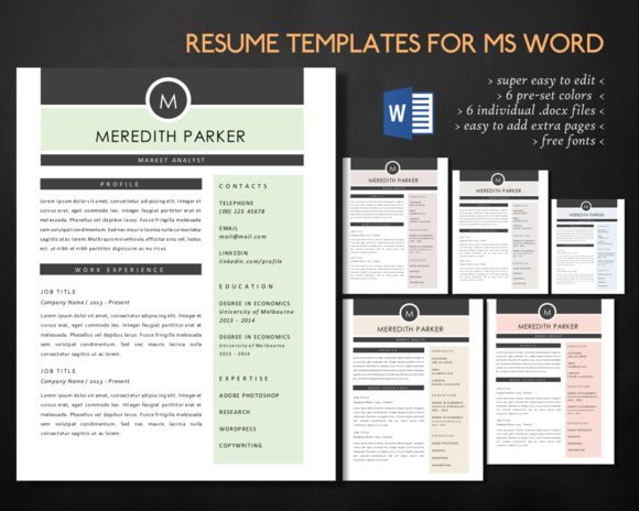 Modern 3 In 1 Word Resume