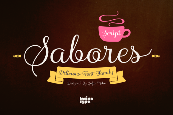 Sabores Script Family 75% Off