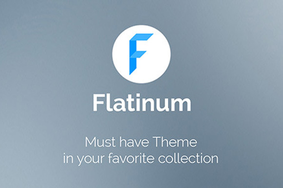 Flatinum Multi-Purpose WP Theme
