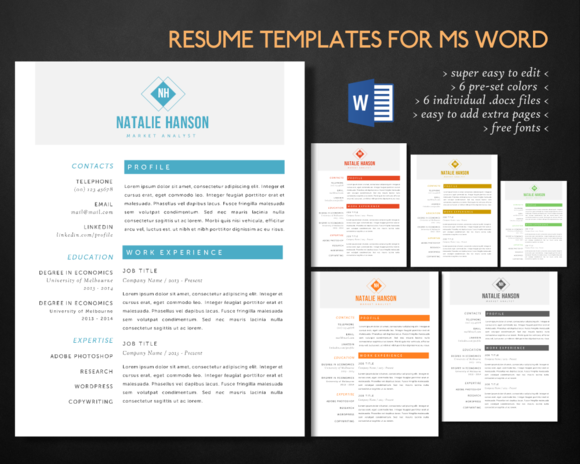 Elegant 2 Pages Word Resume