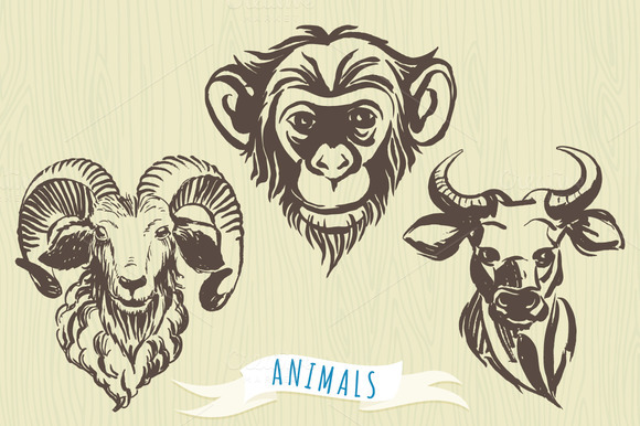 Set Of Hand-drawn Animal S Portraits