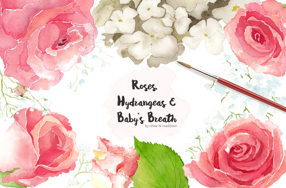 ROSES HYDRANGEAS BABY S BREATH