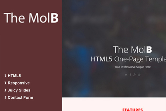 MolB HTML5 Template