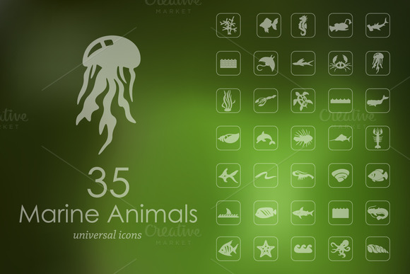 35 MARINE ANIMALS Icons