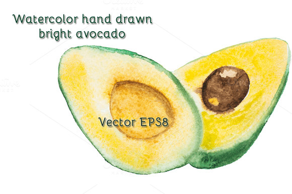 Watercolor Vector Avocado