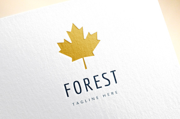 Leaf From Forest Logo Icon Nature