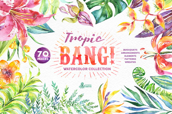 Tropic Bang Floral Collection