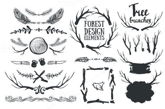 Forest Hand Drawn Design Elements