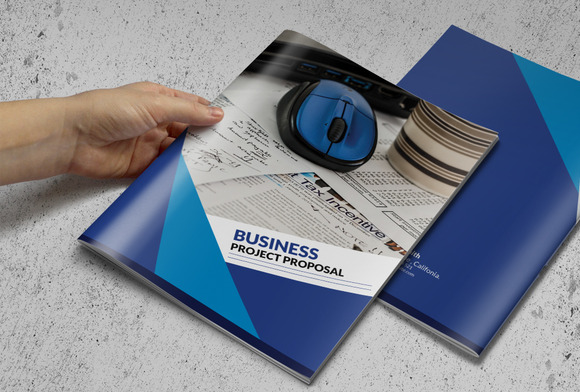 Business Proposal Or Brochure