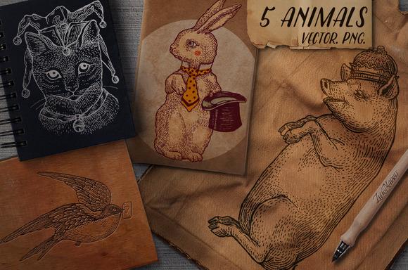 5 Graphics Animals Set